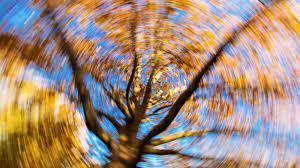 dizziness associated with craniocervical instability ehlers danlos syndrome