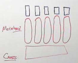 Representation of normal metatarsals
